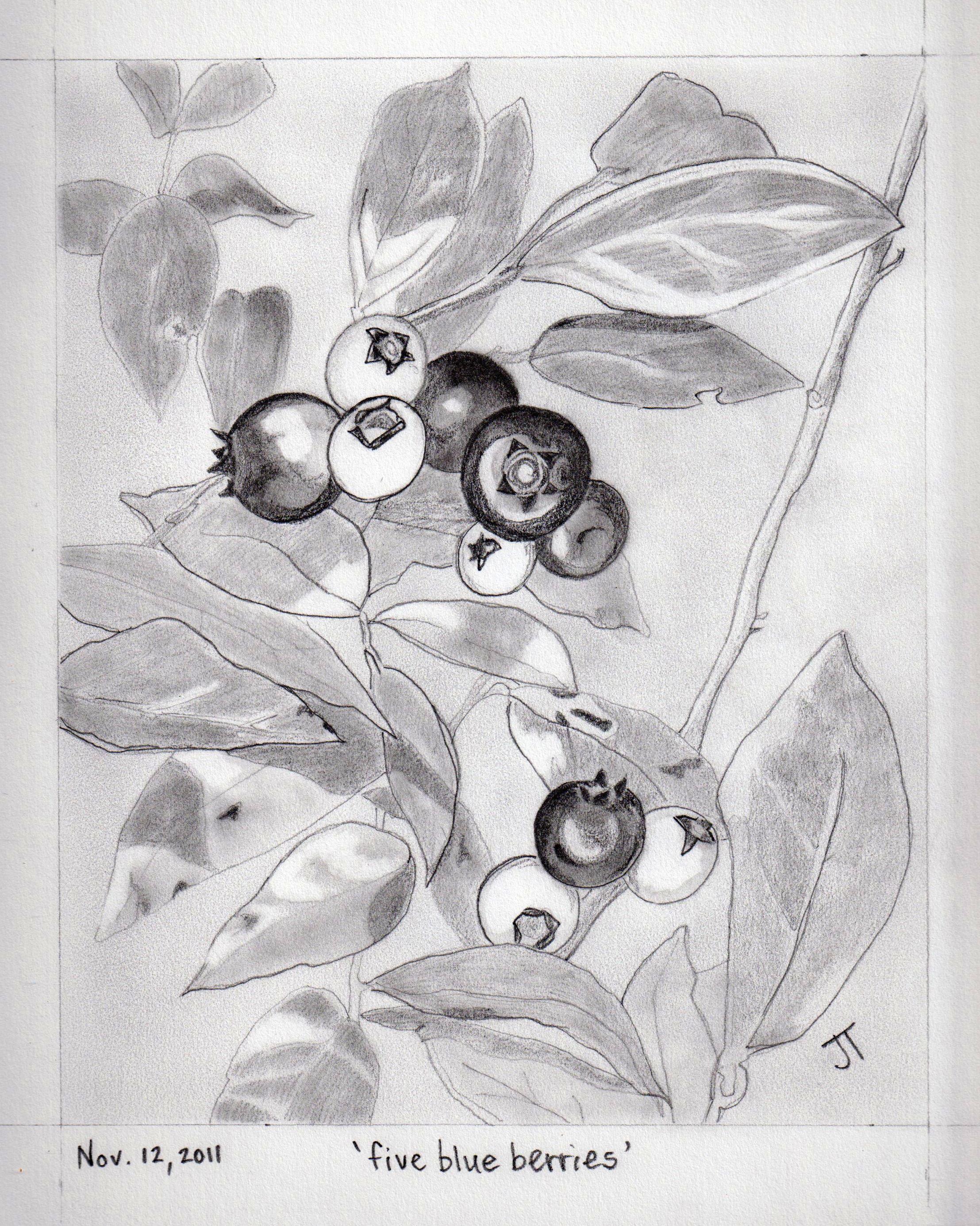 'five blue berries'