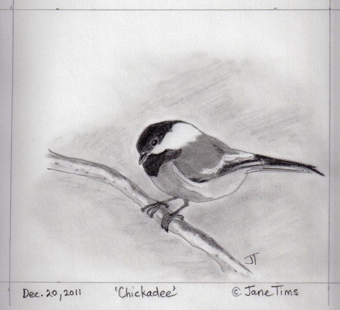 one of the usual visitors to our feeder ... the Black-capped Chickadee