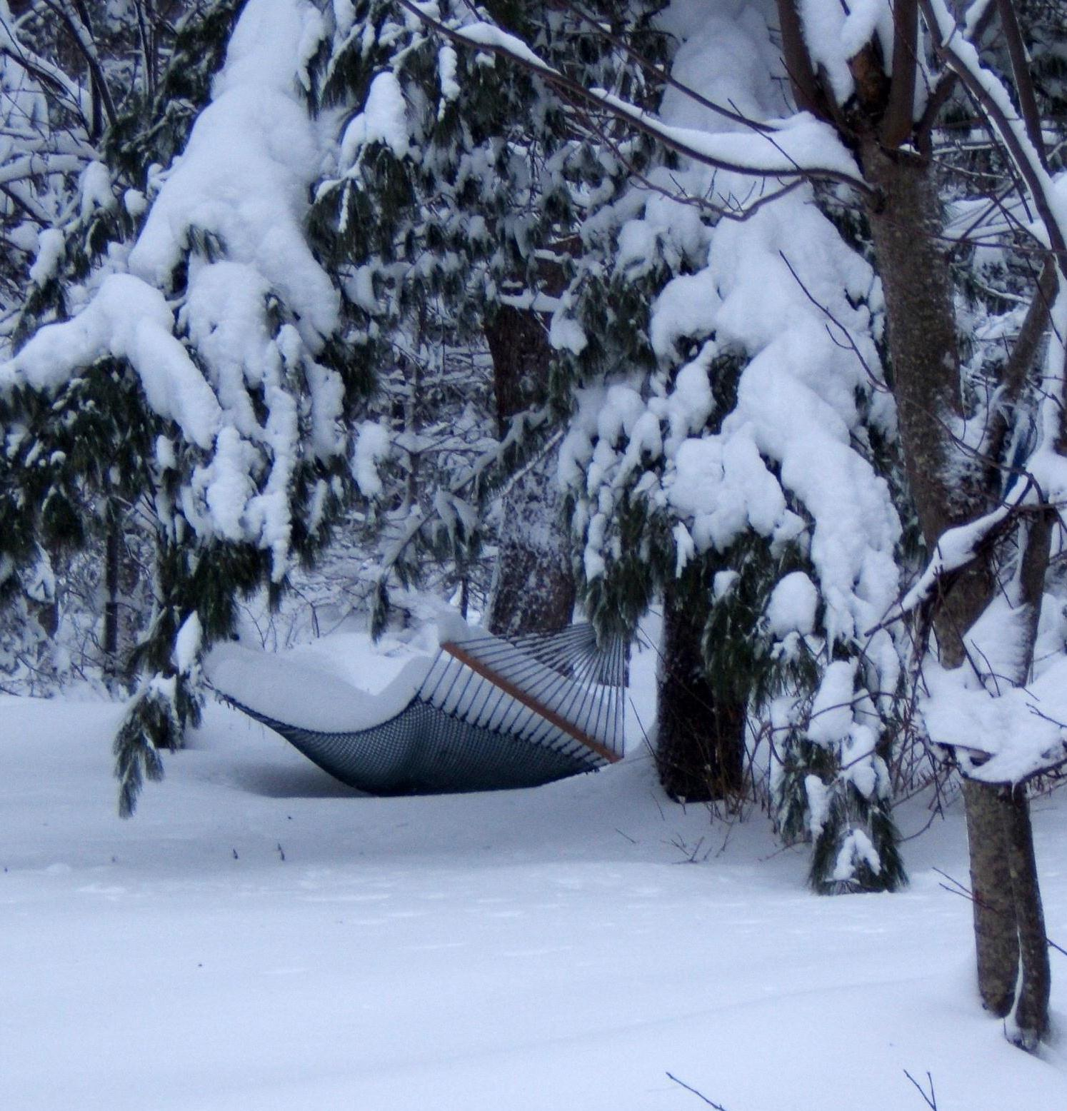 snow rocking in hammock