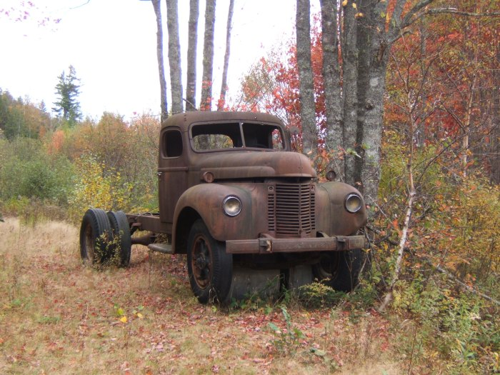 abandoned International truck