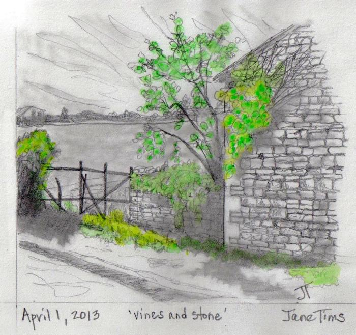 'vines and stone'