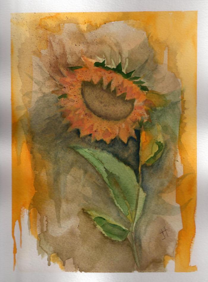 'sunflower'