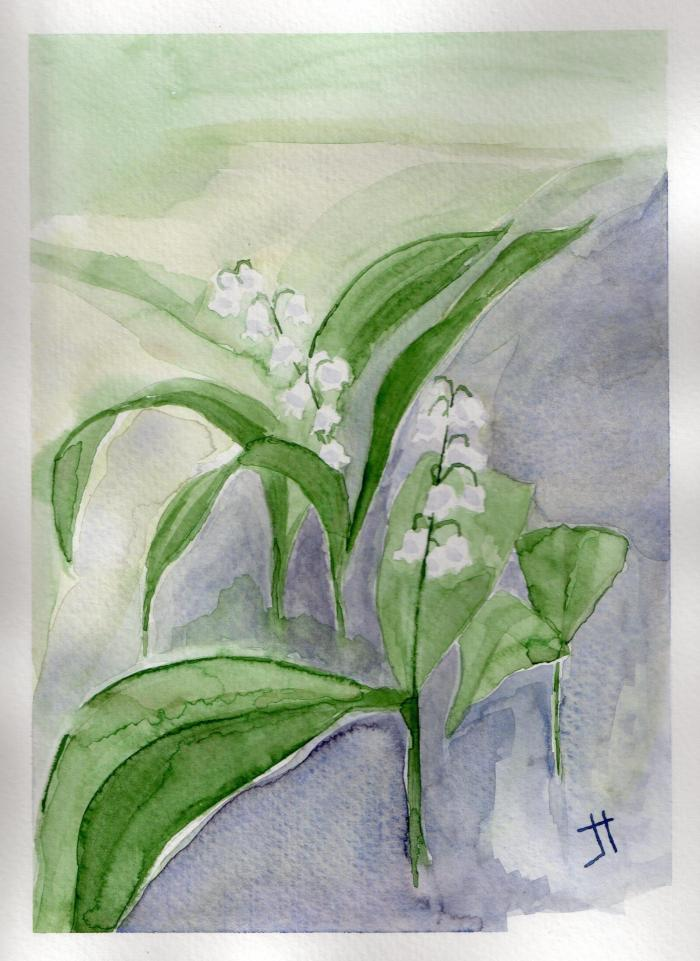 'lily-of-the-valley'