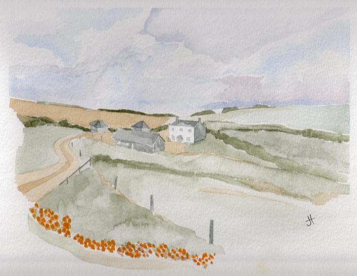 July 8, 2013 'farm near Downderry' Jane Tims