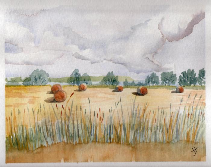 Aug 18, 2013  'haybales near Trenarren'  Jane Tims