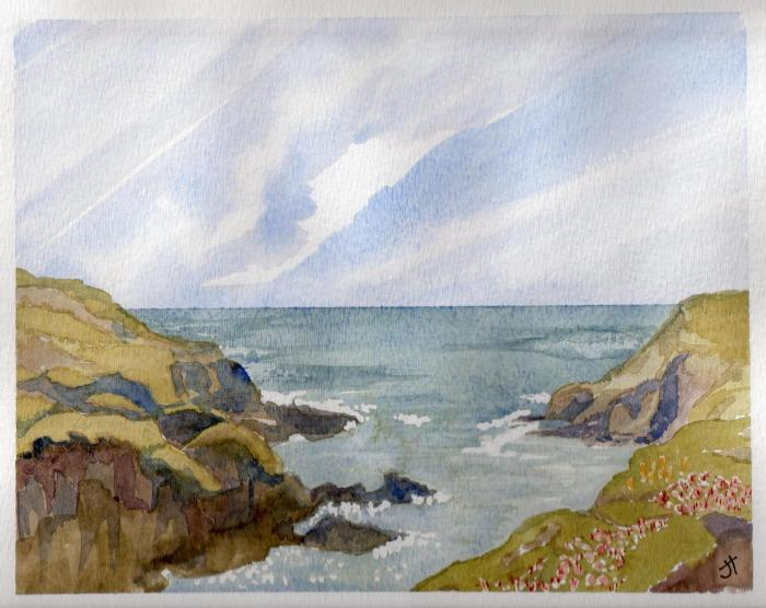 September 7, 2013  'rugged coast at Portloe'   Jane Tims