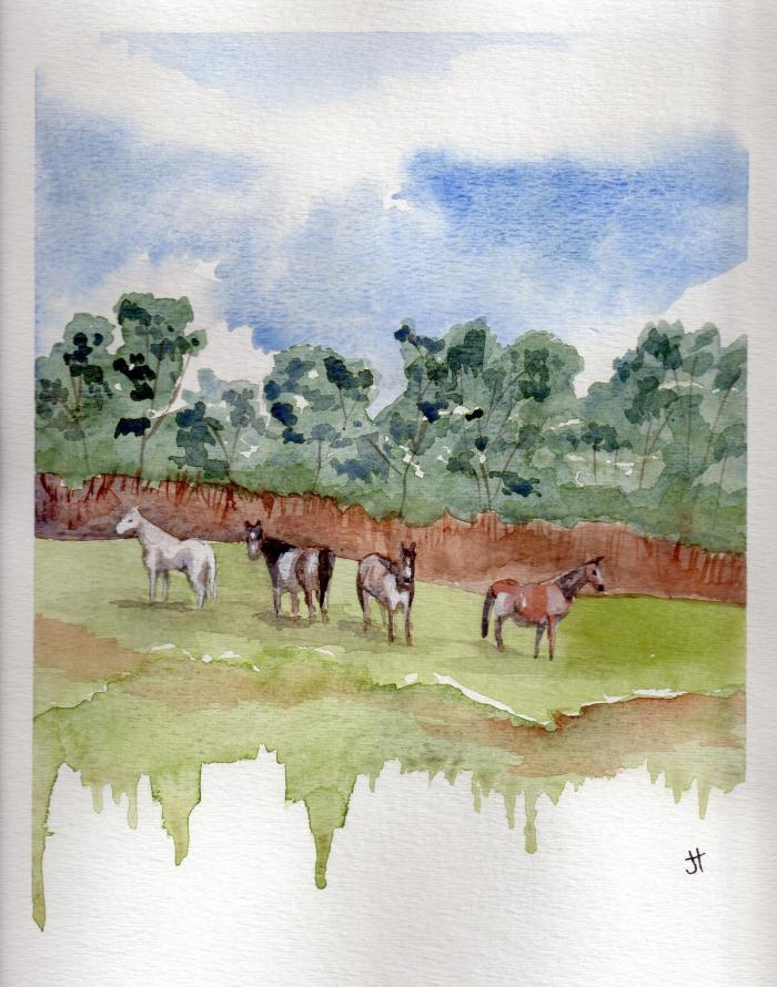 December 2, 2013 'horses along Pengarrock Hill' Jane Tims