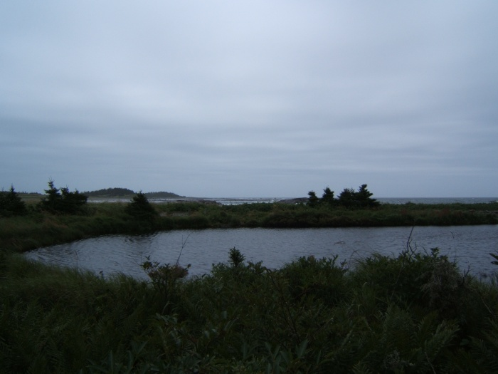 near Torr Bay, Nova Scotia