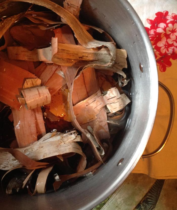 strips of birch bark, set to soak in water