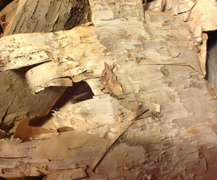 birch bark, donated by my brother-in-law