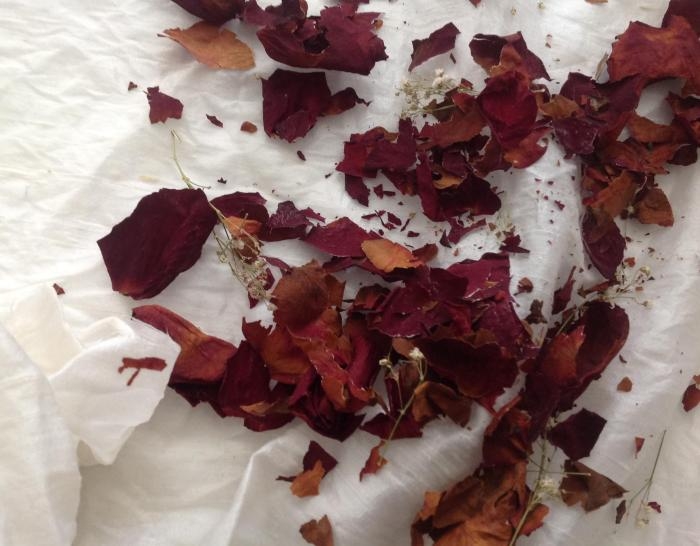 rose petals, scattered on the silk