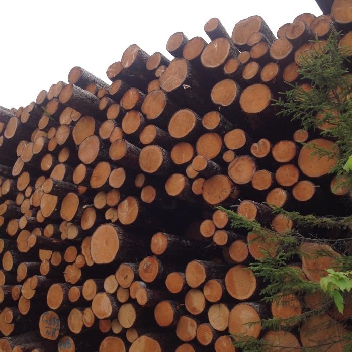 wall of cut wood