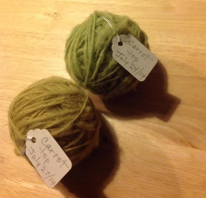 colours of wool obtained from the first and second boil in a dyestuff of carrot tops