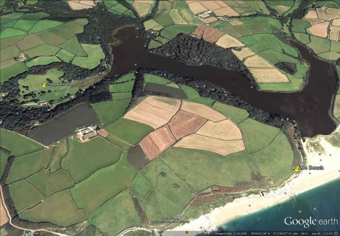 from the beach at the mouth of Loe Pond to Shadywalk Wood (map from Google Earth)