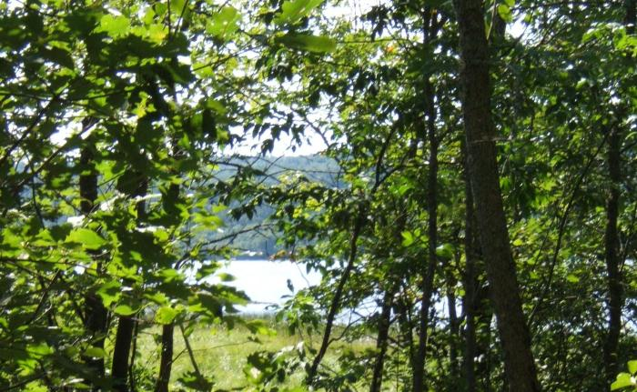 a view of the lake at our cabin property