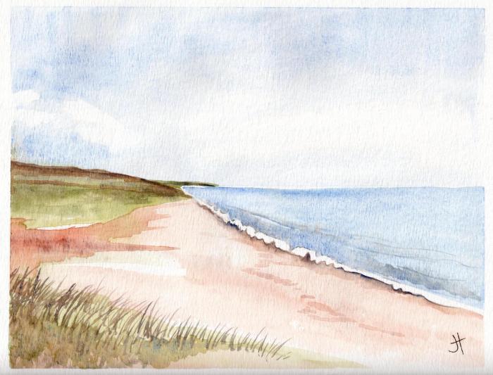 August 16, 2014  'beach at Loe'  Jane Tims