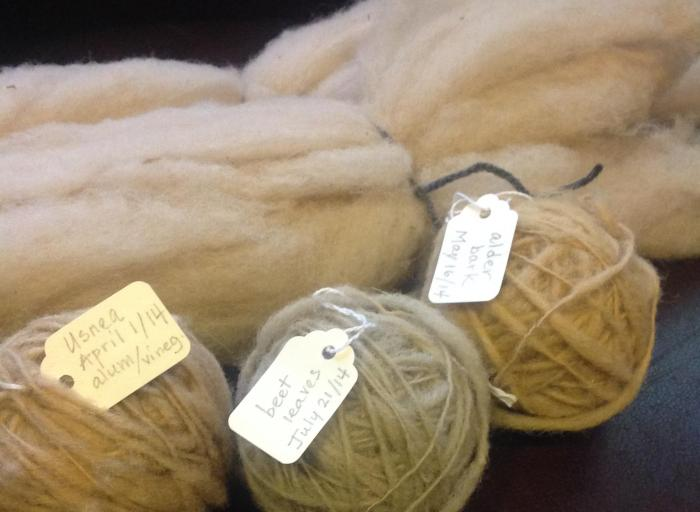 in background, alum-treated wool dyed with rose hips; in the foreground, spun wool dyed with lichen, beet leaves and alder bark