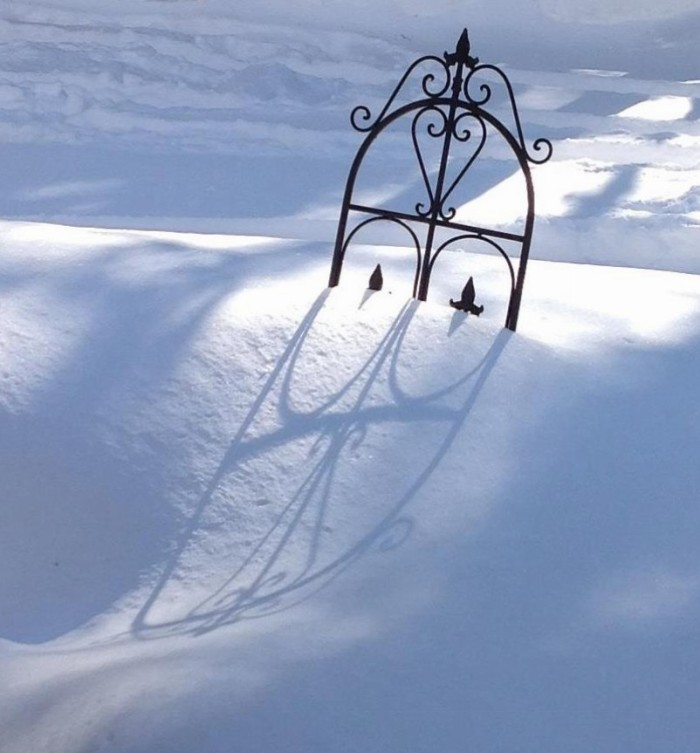 shadow on the snow