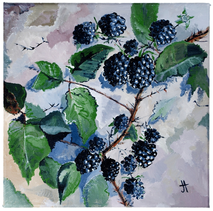 February 29, 2016 'brambles' Jane Tims