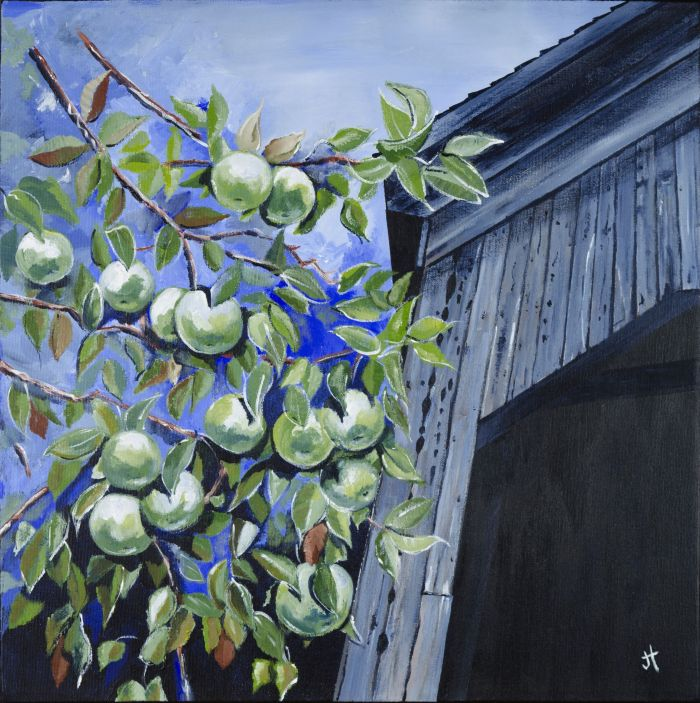 apples, Malone Bridge