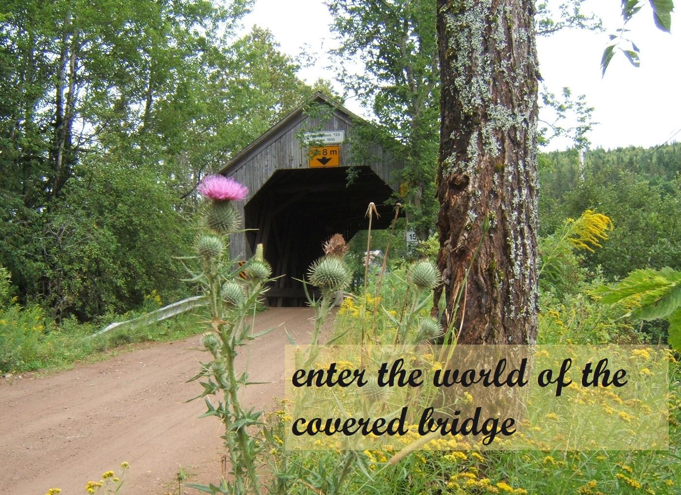 world of the covered bridge.jpg