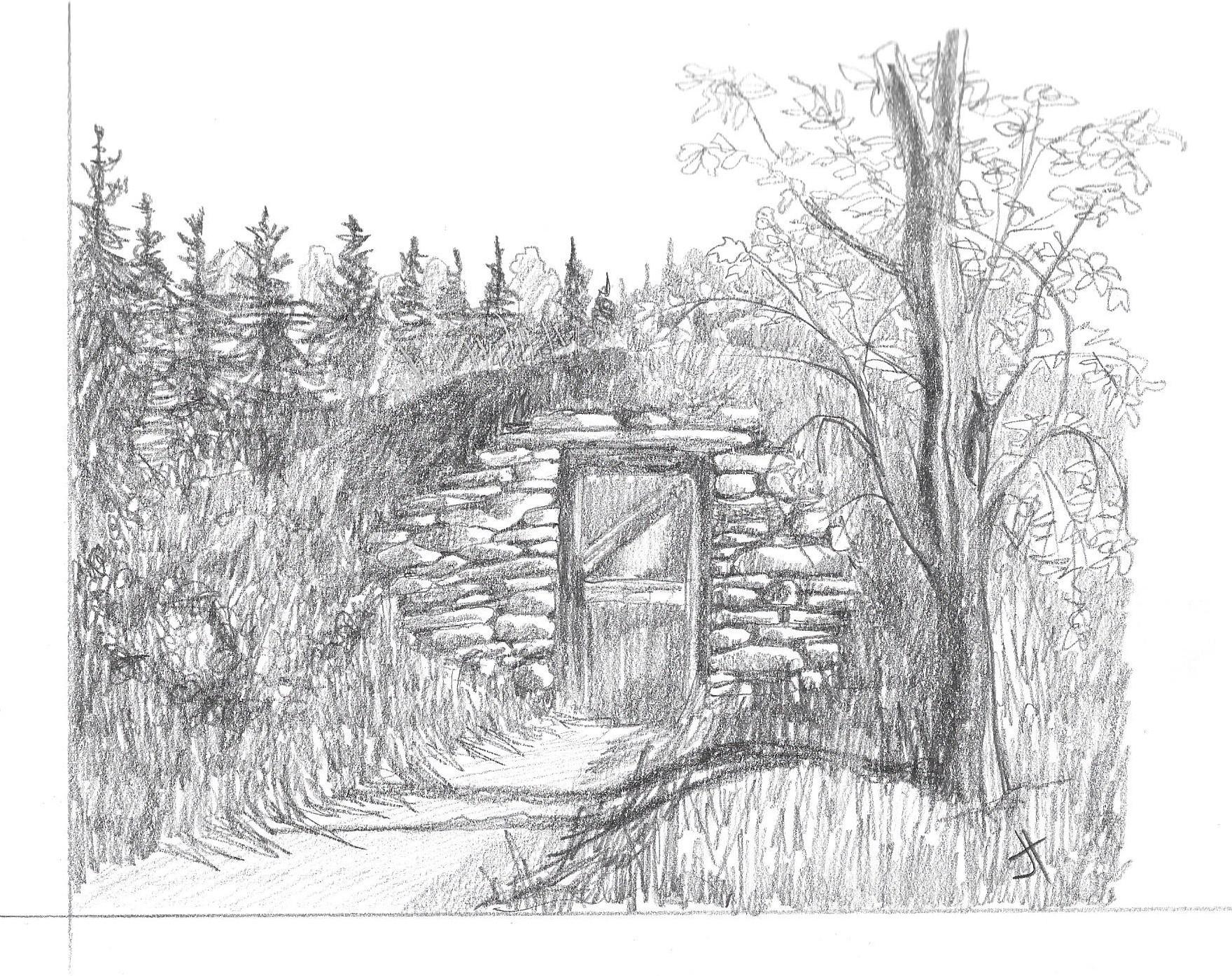 Q. 'root cellar' Jane Tims
