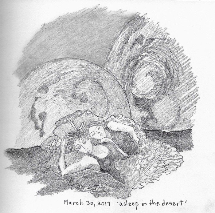 'asleep in the desert'paperback