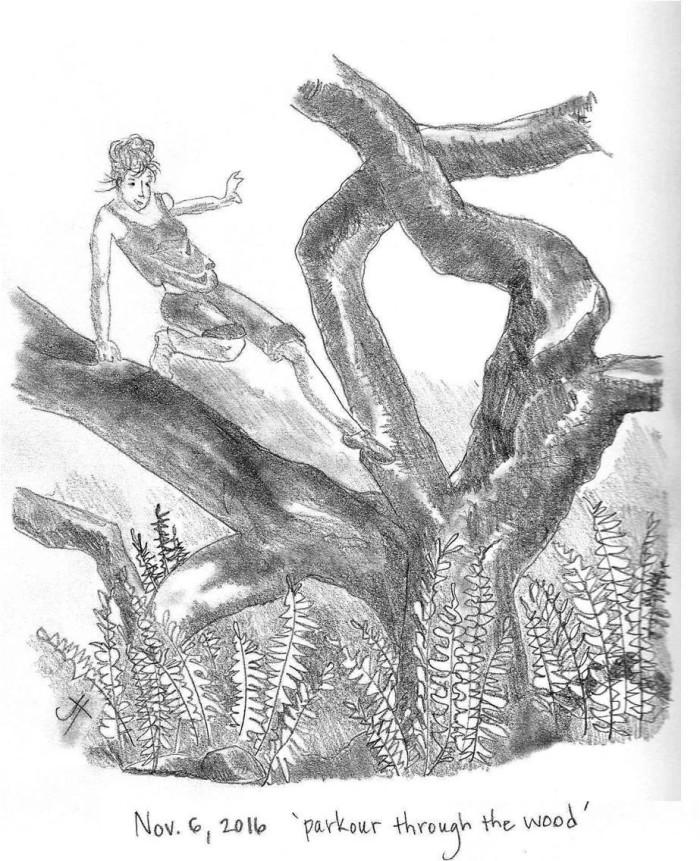 'parkour through the wood'
