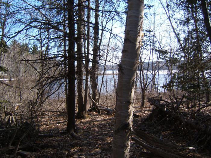 lake at camp
