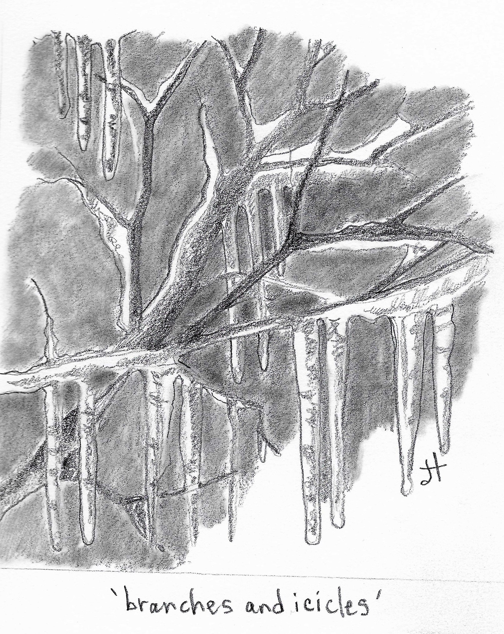 branches and icicles paperback